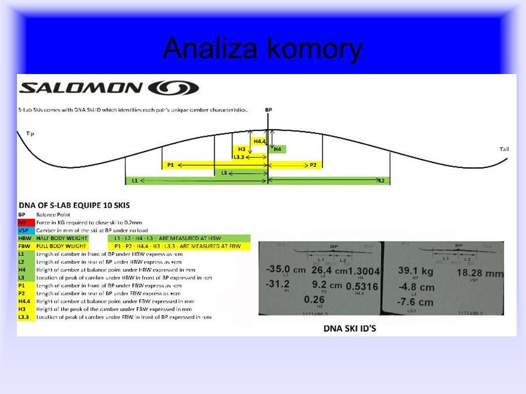Analiza komory