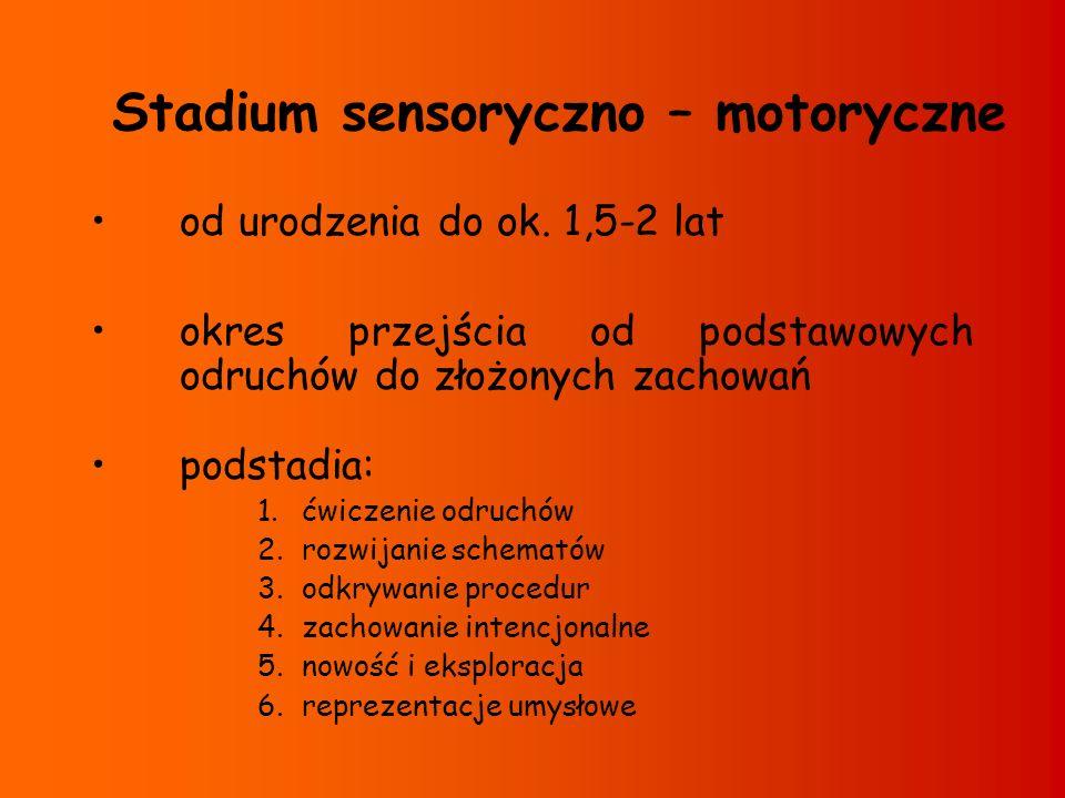 Stadium sensoryczno – motoryczne