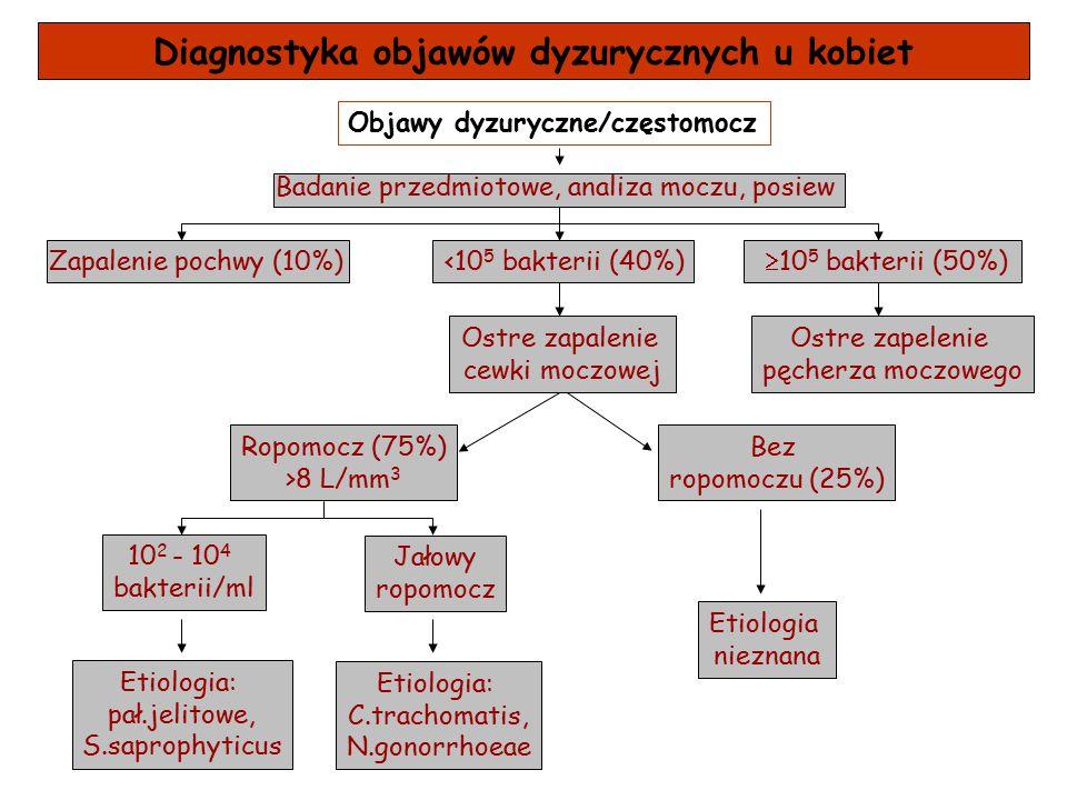 Diagnostyka objawów dyzurycznych u kobiet