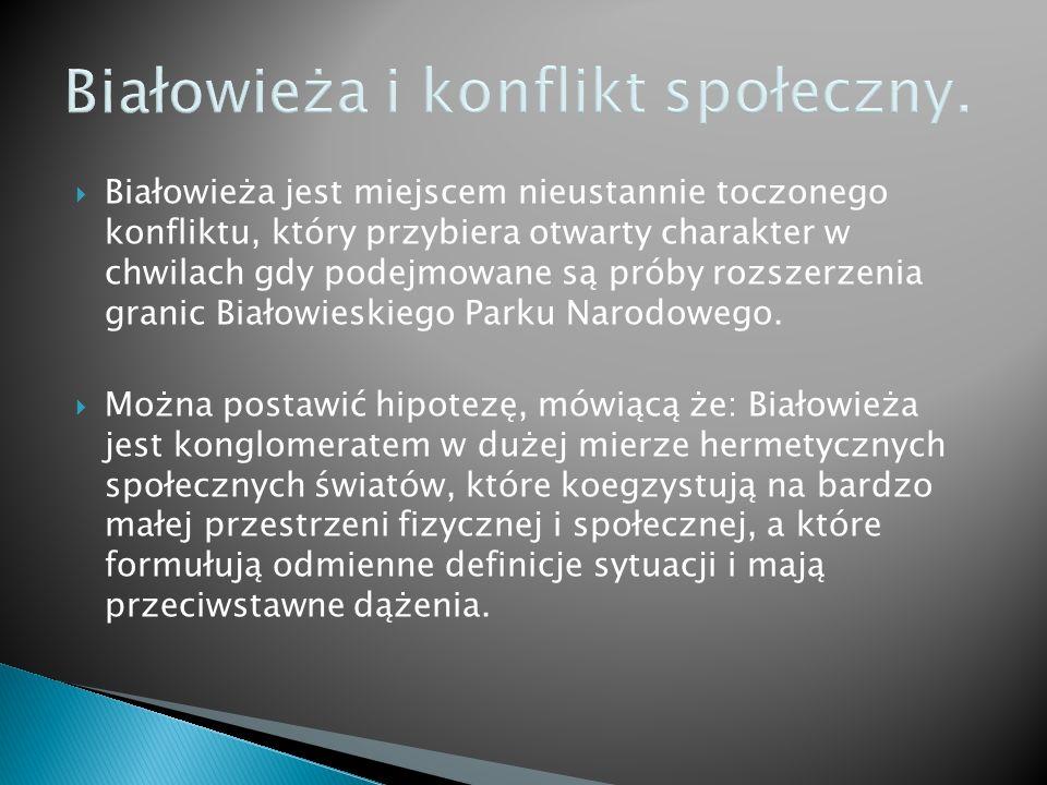 Białowieża i konflikt społeczny.