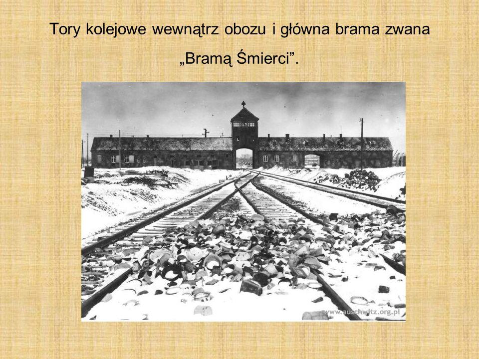 """Tory kolejowe wewnątrz obozu i główna brama zwana """"Bramą Śmierci ."""