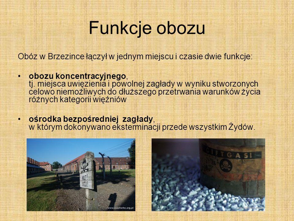Funkcje obozu Obóz w Brzezince łączył w jednym miejscu i czasie dwie funkcje: