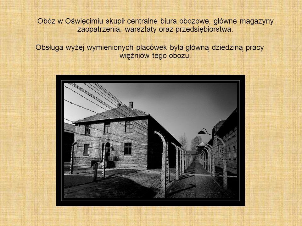 Obóz w Oświęcimiu skupił centralne biura obozowe, główne magazyny zaopatrzenia, warsztaty oraz przedsiębiorstwa.