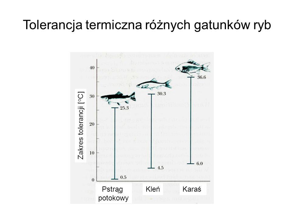 Tolerancja termiczna różnych gatunków ryb