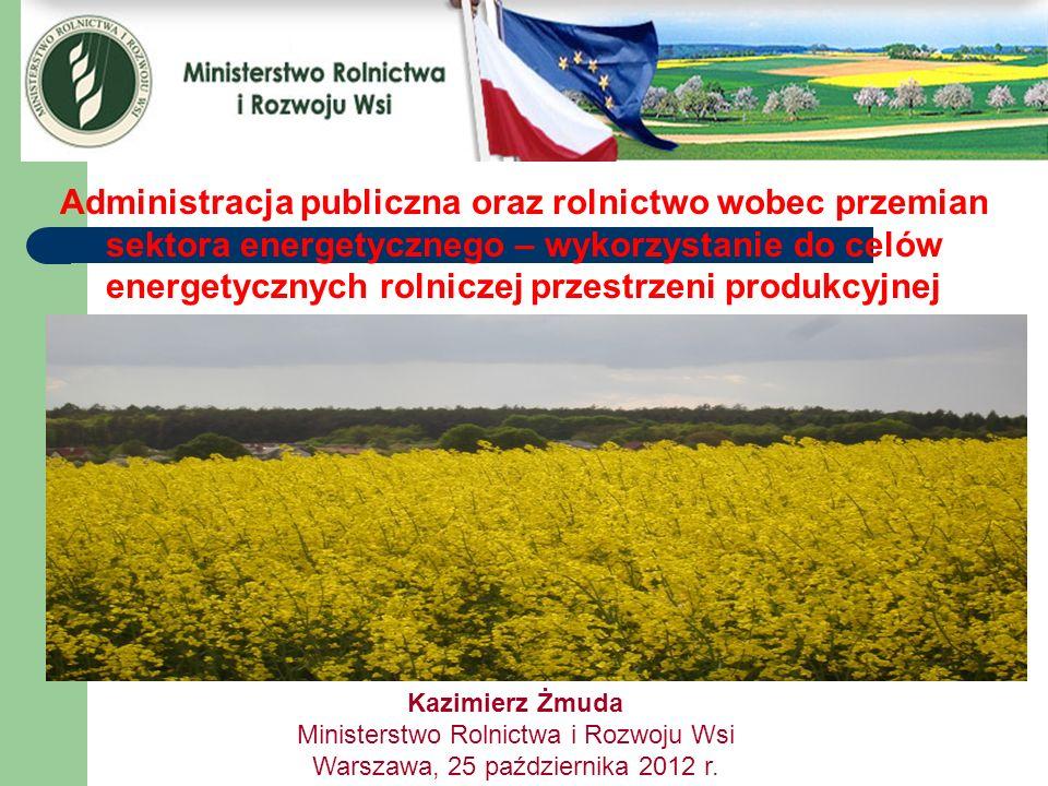 Administracja publiczna oraz rolnictwo wobec przemian sektora energetycznego – wykorzystanie do celów energetycznych rolniczej przestrzeni produkcyjnej