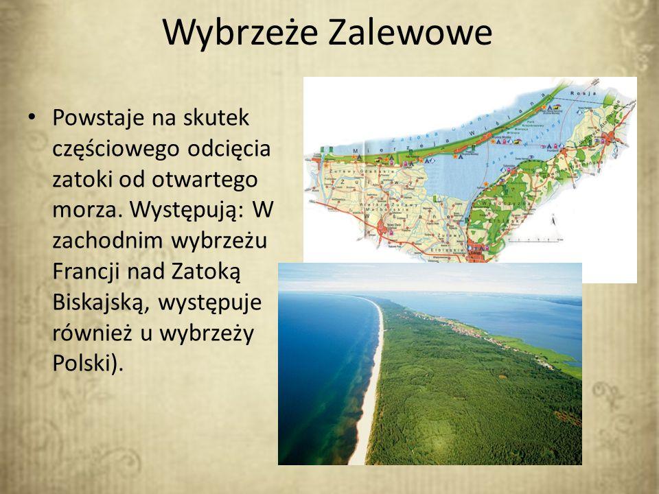 Wybrzeże Zalewowe