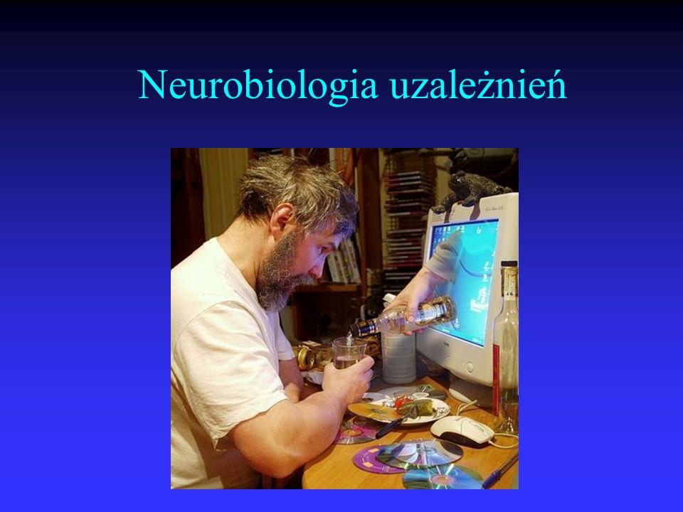 Neurobiologia uzależnień