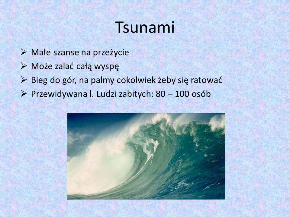 Tsunami Małe szanse na przeżycie Może zalać całą wyspę