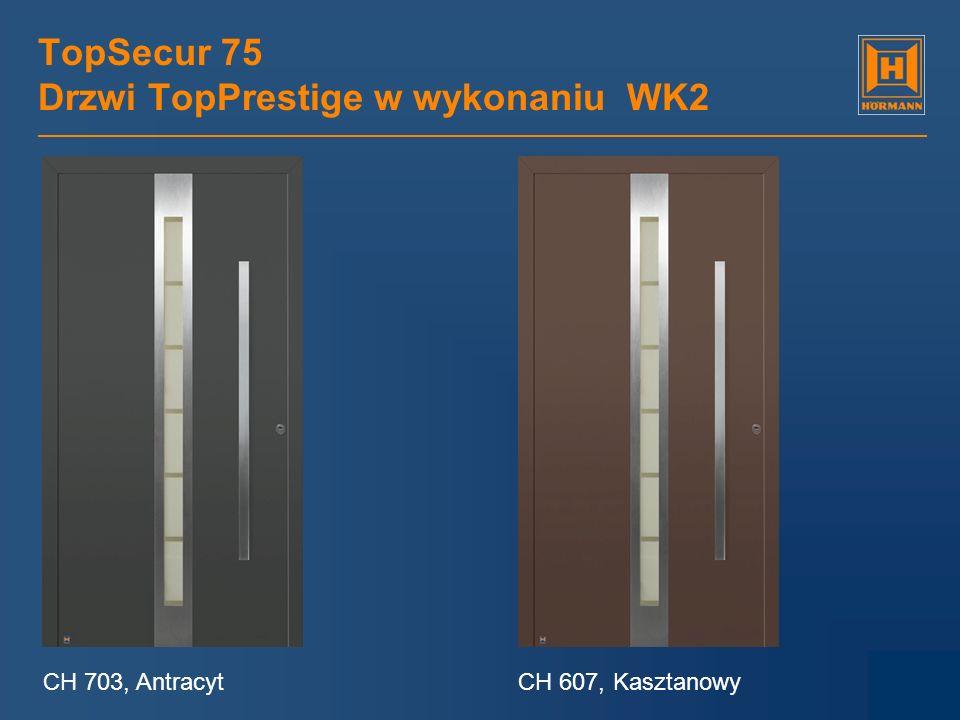 TopSecur 75 Drzwi TopPrestige w wykonaniu WK2