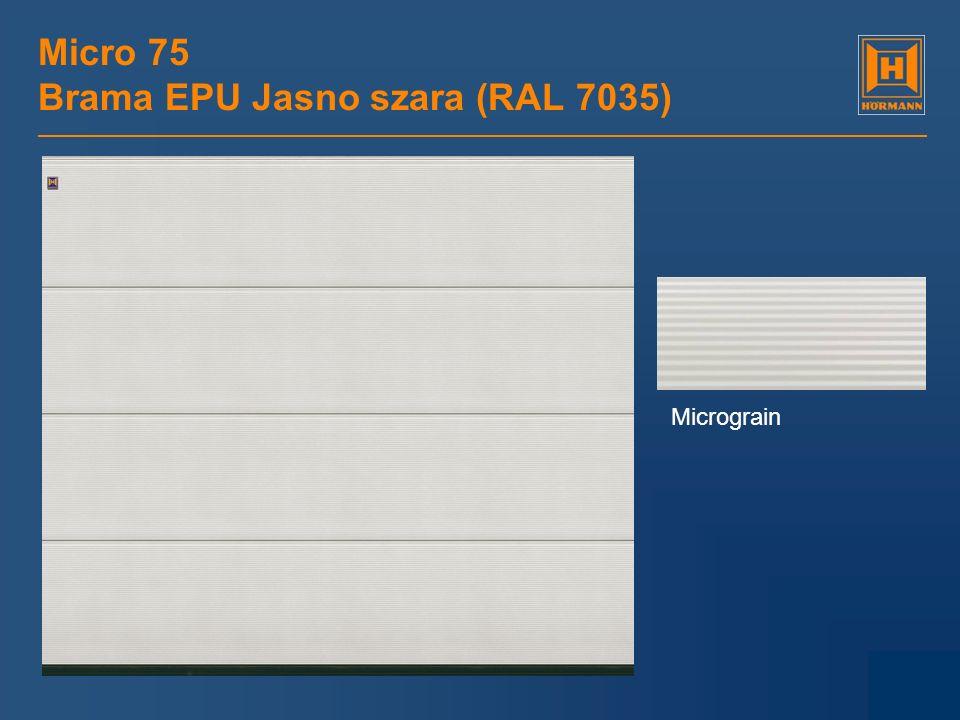 Micro 75 Brama EPU Jasno szara (RAL 7035)
