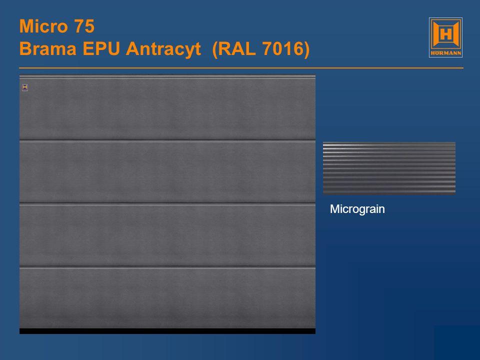 Micro 75 Brama EPU Antracyt (RAL 7016)