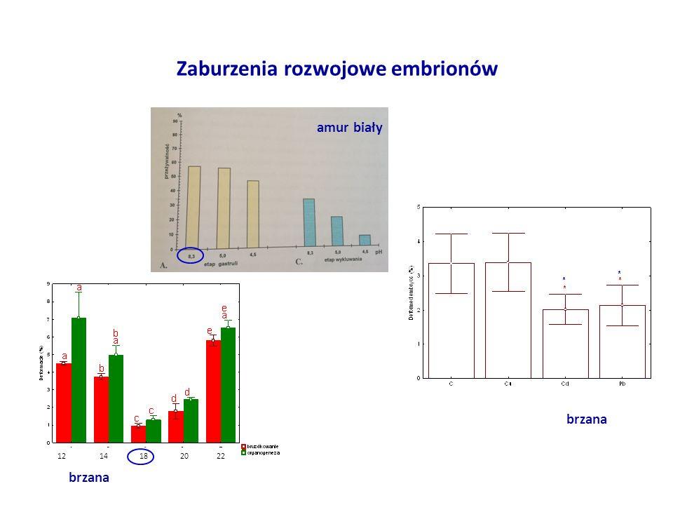 Zaburzenia rozwojowe embrionów