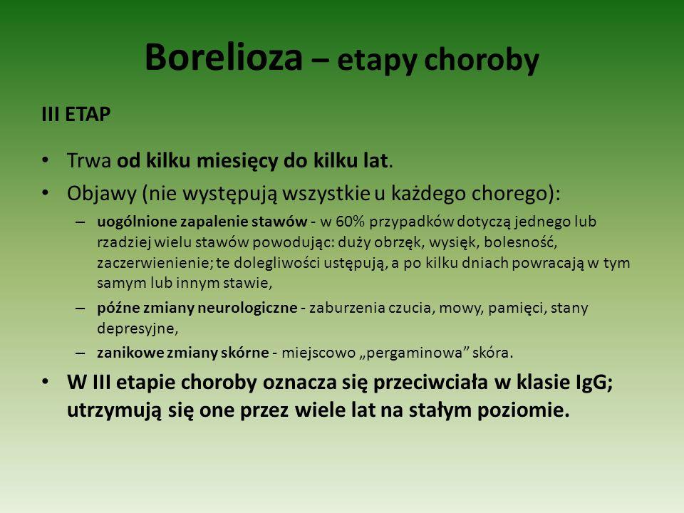 Borelioza – etapy choroby