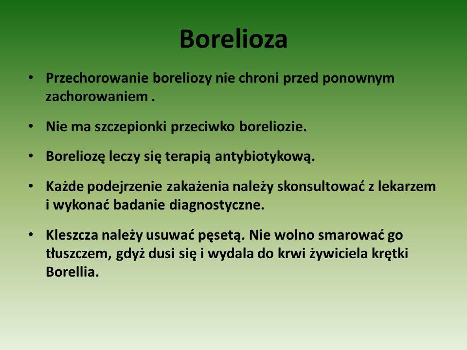Borelioza Przechorowanie boreliozy nie chroni przed ponownym zachorowaniem . Nie ma szczepionki przeciwko boreliozie.