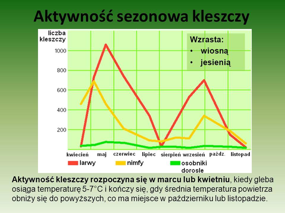 Aktywność sezonowa kleszczy