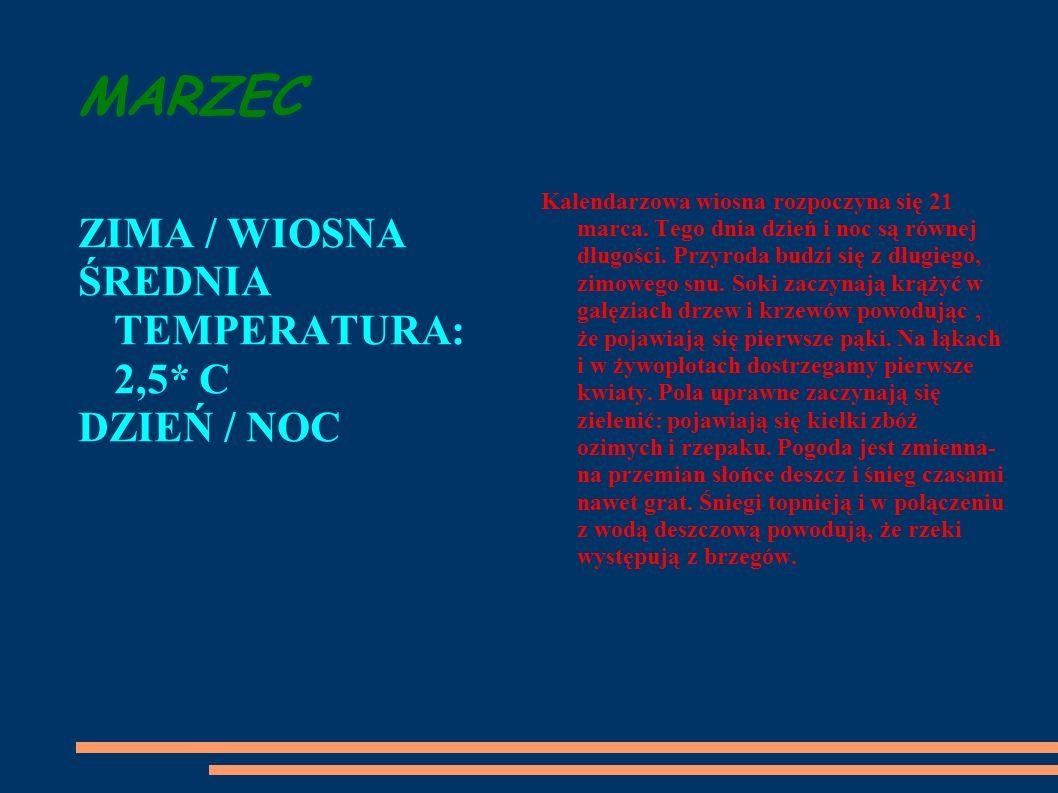 MARZEC ZIMA / WIOSNA ŚREDNIA TEMPERATURA: 2,5* C DZIEŃ / NOC