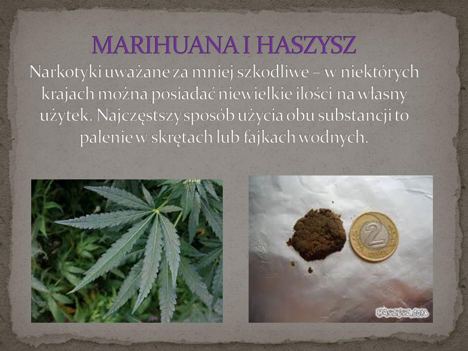 MARIHUANA I HASZYSZ Narkotyki uważane za mniej szkodliwe – w niektórych krajach można posiadać niewielkie ilości na własny użytek.