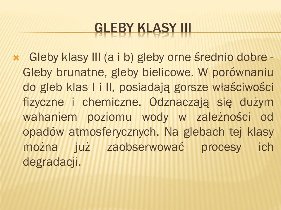 Gleby klasy iii