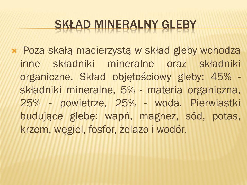 Skład mineralny gleby