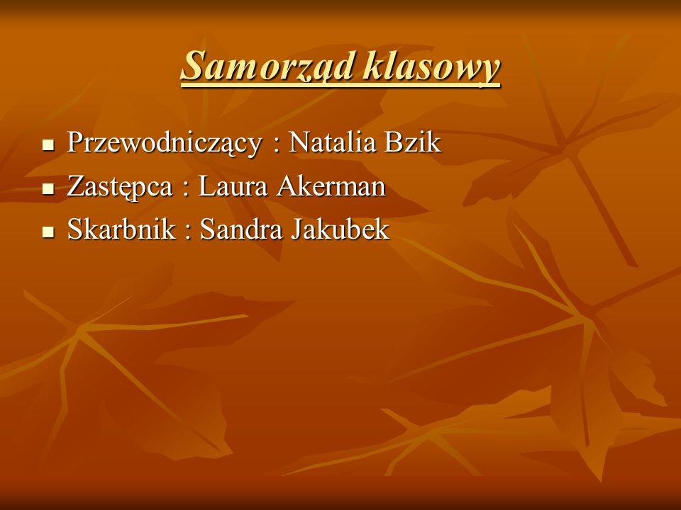 Samorząd klasowy Przewodniczący : Natalia Bzik