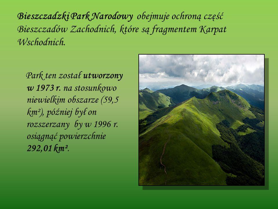 Bieszczadzki Park Narodowy obejmuje ochroną część Bieszczadów Zachodnich, które są fragmentem Karpat Wschodnich.