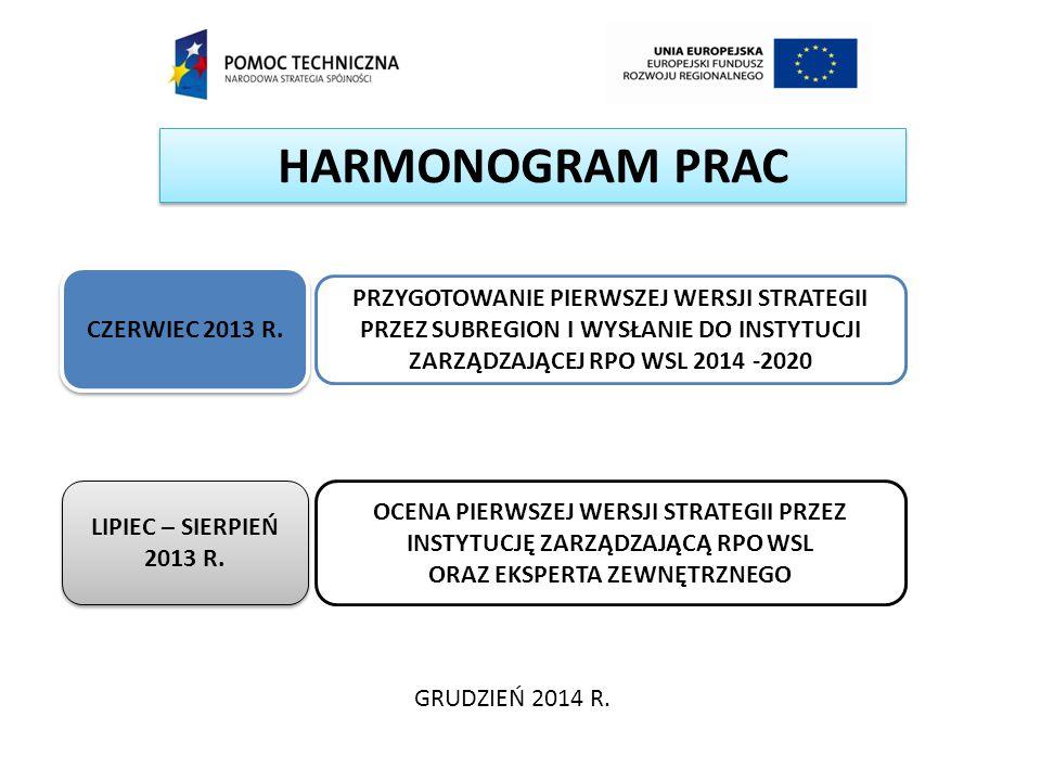 HARMONOGRAM PRAC CZERWIEC 2013 R. PRZYGOTOWANIE PIERWSZEJ WERSJI STRATEGII PRZEZ SUBREGION I WYSŁANIE DO INSTYTUCJI ZARZĄDZAJĄCEJ RPO WSL 2014 -2020.