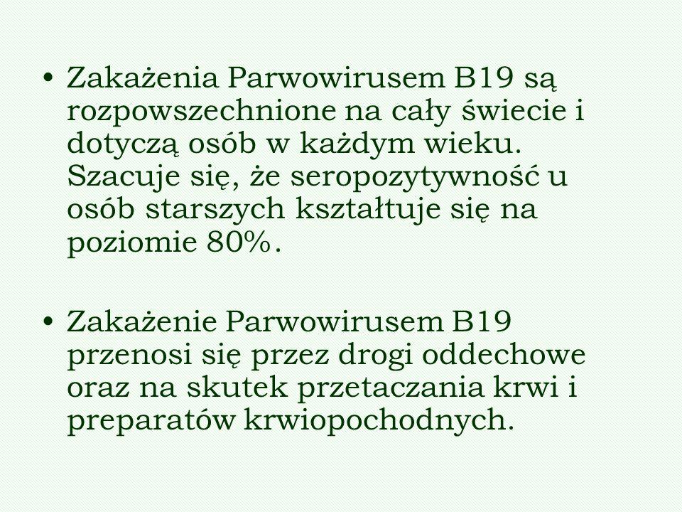 Zakażenia Parwowirusem B19 są rozpowszechnione na cały świecie i dotyczą osób w każdym wieku. Szacuje się, że seropozytywność u osób starszych kształtuje się na poziomie 80%.