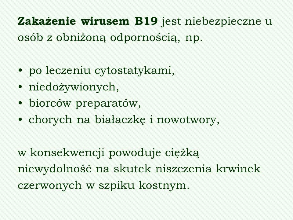 Zakażenie wirusem B19 jest niebezpieczne u