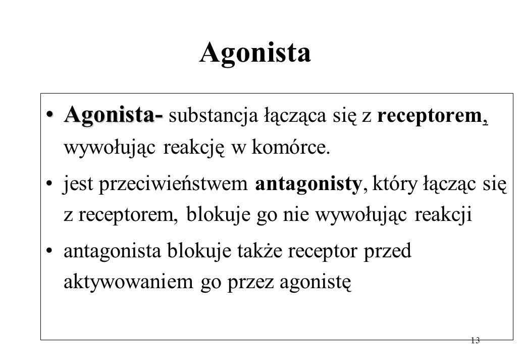Agonista Agonista- substancja łącząca się z receptorem, wywołując reakcję w komórce.