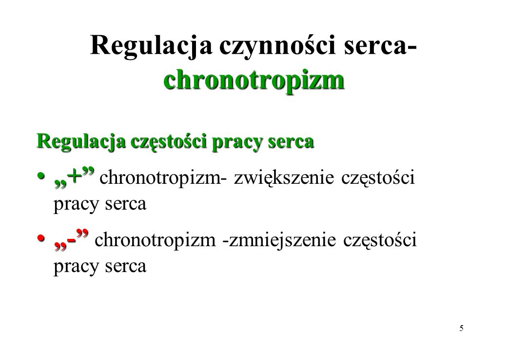 Regulacja czynności serca- chronotropizm