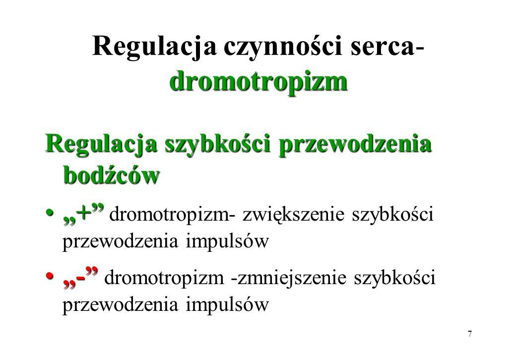 Regulacja czynności serca- dromotropizm