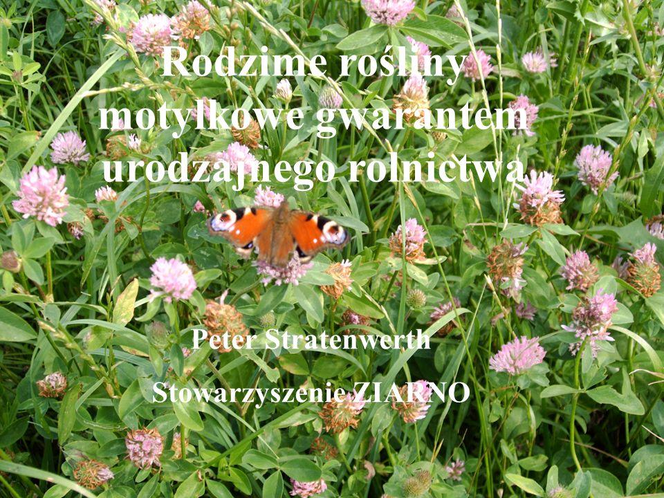Rodzime rośliny motylkowe jako gwarant