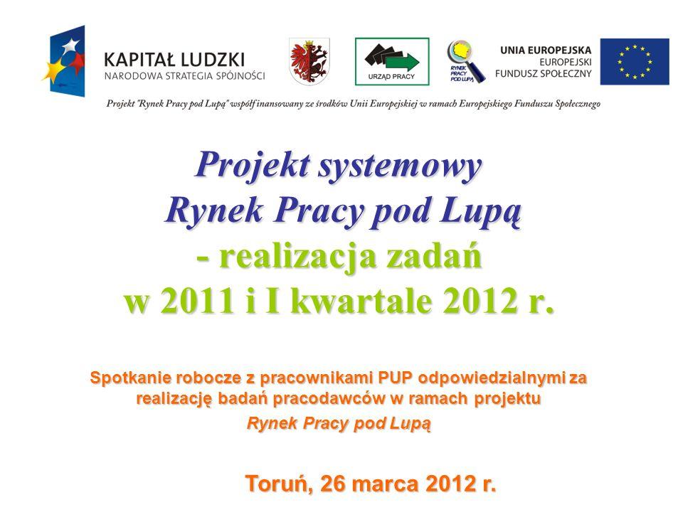 Projekt systemowy Rynek Pracy pod Lupą - realizacja zadań w 2011 i I kwartale 2012 r.