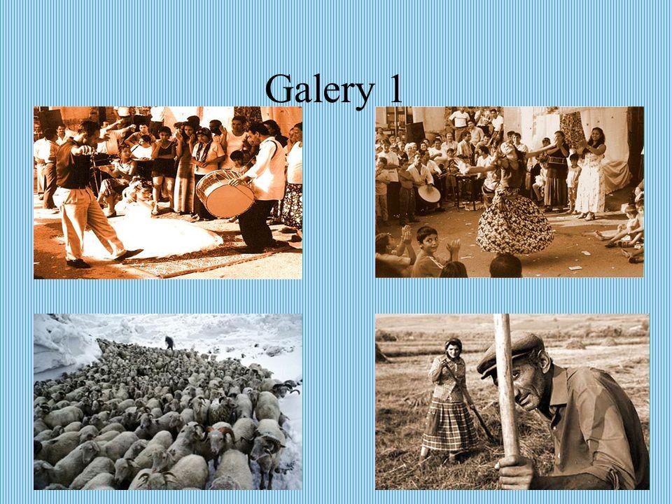 Galery 1