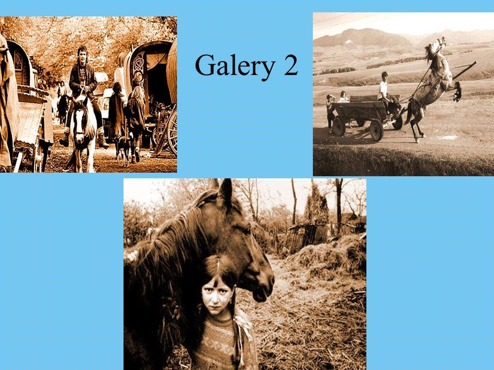 Galery 2