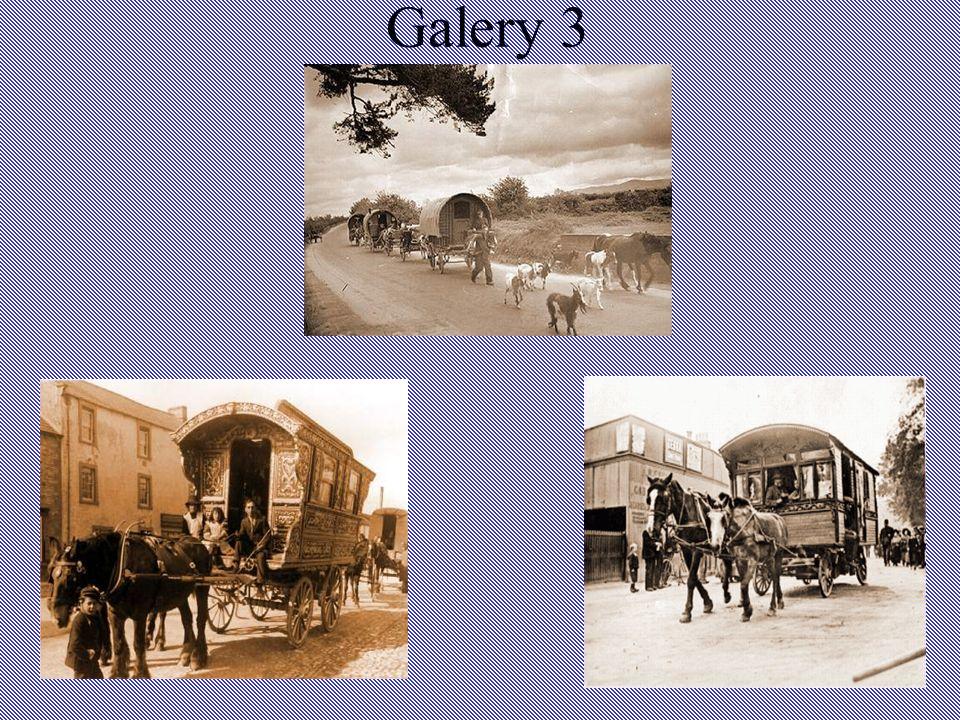 Galery 3