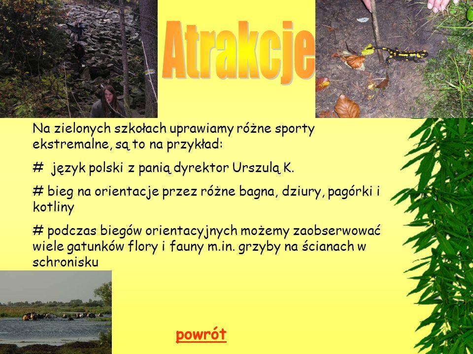 Atrakcje Na zielonych szkołach uprawiamy różne sporty ekstremalne, są to na przykład: # język polski z panią dyrektor Urszulą K.