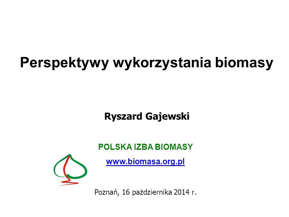 Perspektywy wykorzystania biomasy