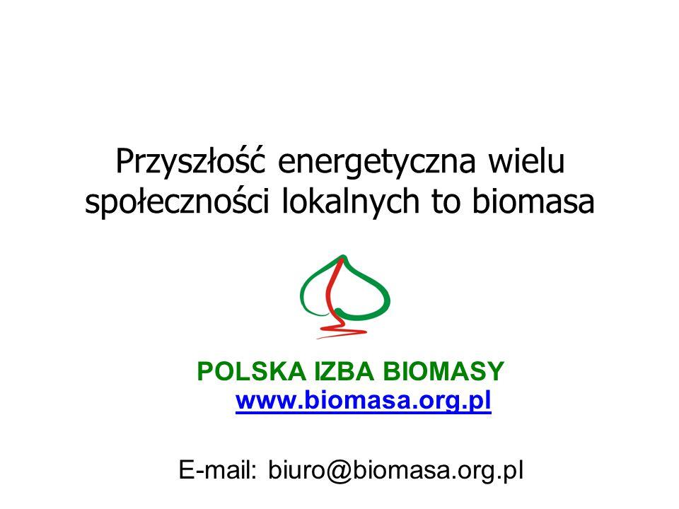 Przyszłość energetyczna wielu społeczności lokalnych to biomasa