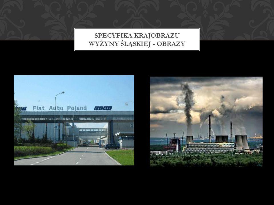 Specyfika krajobrazu wyżyny śląskiej - obrazy