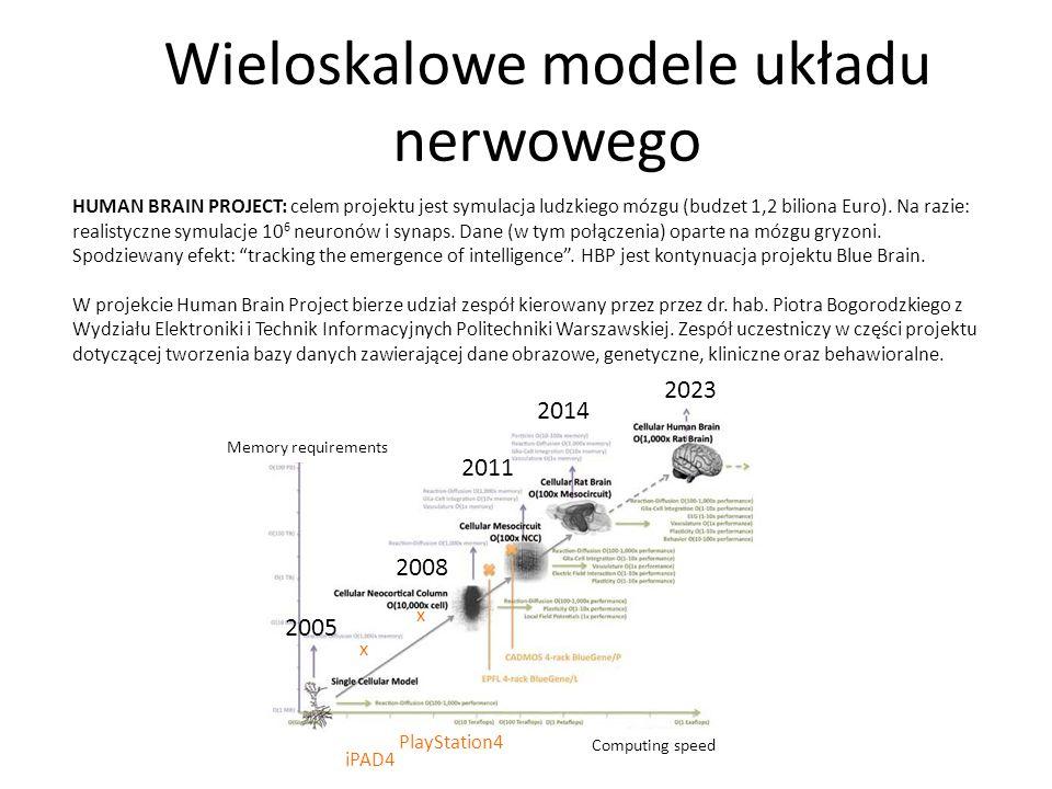 Wieloskalowe modele układu nerwowego
