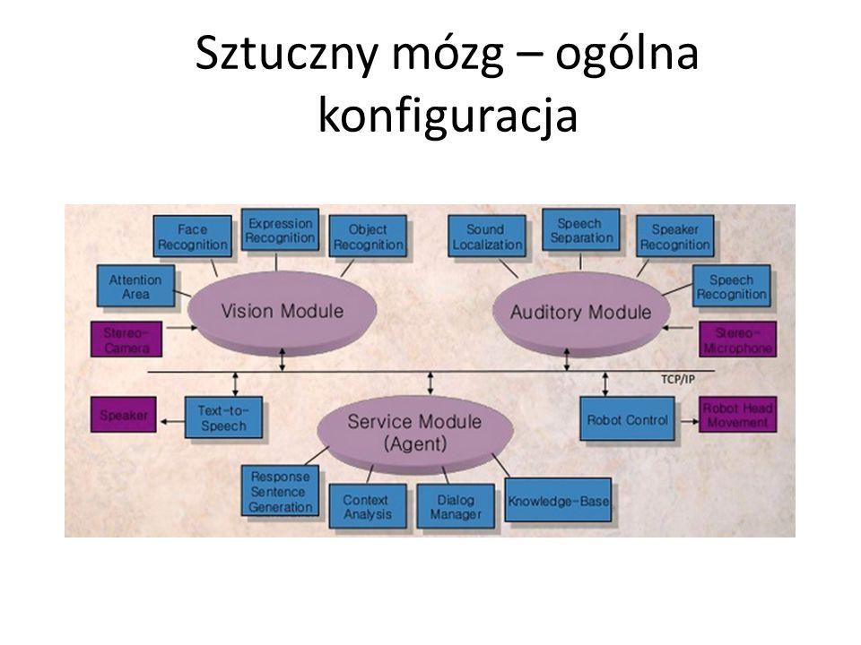 Sztuczny mózg – ogólna konfiguracja