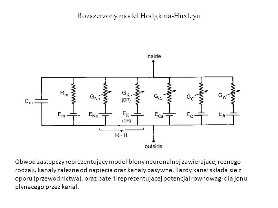 Rozszerzony model Hodgkina-Huxleya