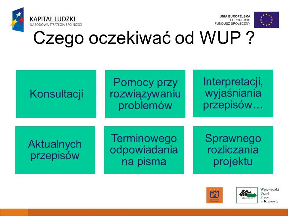 Czego oczekiwać od WUP Konsultacji