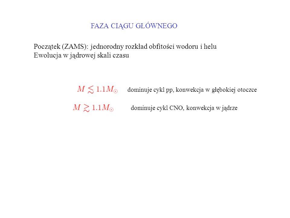 Początek (ZAMS): jednorodny rozkład obfitości wodoru i helu