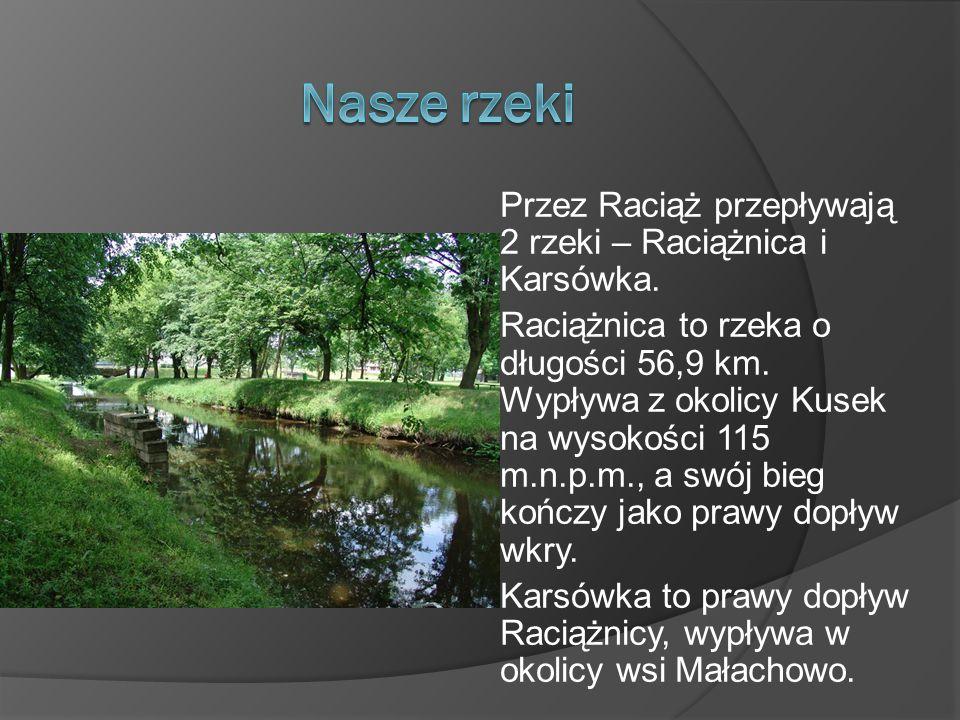 Nasze rzeki Przez Raciąż przepływają 2 rzeki – Raciążnica i Karsówka.