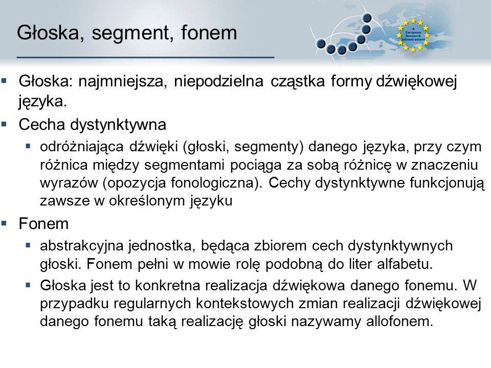 Głoska, segment, fonem Głoska: najmniejsza, niepodzielna cząstka formy dźwiękowej języka. Cecha dystynktywna.