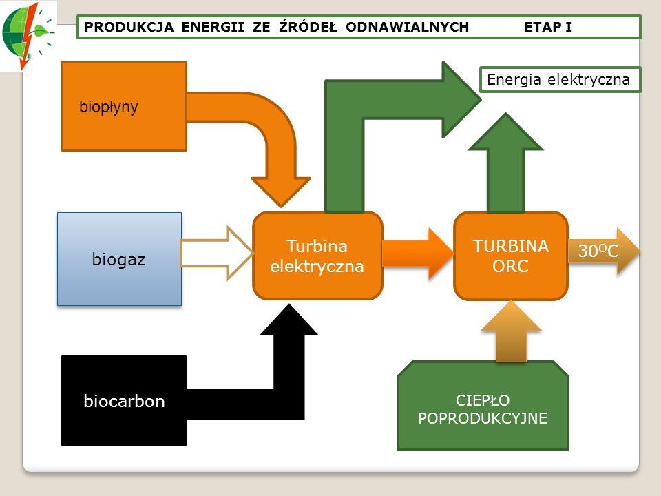 biopłyny biogaz Turbina elektryczna TURBINA ORC 30OC biocarbon