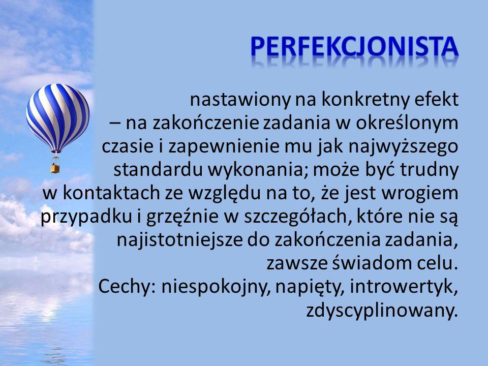 Perfekcjonista