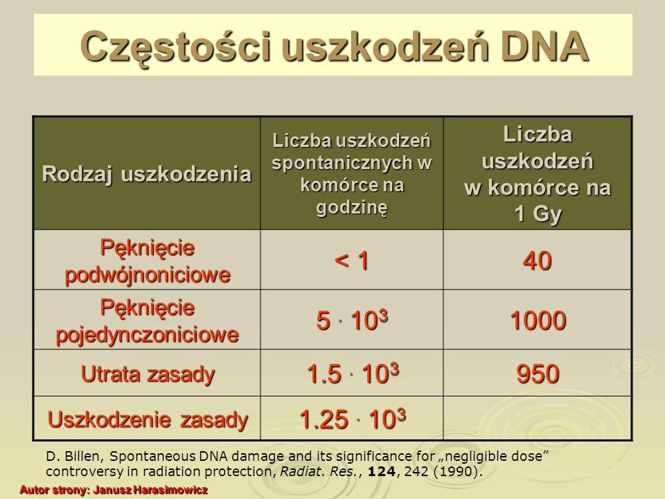 Częstości uszkodzeń DNA